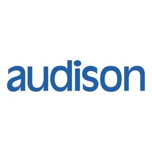 AUDISON AP T-H AVS02 Cablaggio Plug&Play AUDI - VW 52PIN