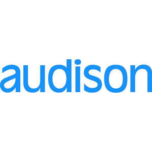 AUDISON CBT1